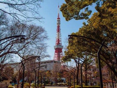 電波塔 東京タワー